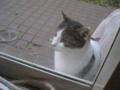 Visitor20121208, #7699