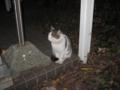 Visitor20121221, #7848