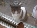 Visitor20121222, #7863