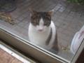 Visitor20121222, #7868