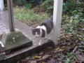 Visitor20121222, #7873