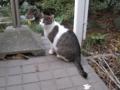 Visitor20121223, #7915