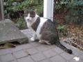 Visitor20121223, #7918
