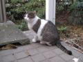 Visitor20121223, #7920