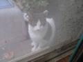 Visitor20121229, #8192