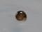 Snail, #7356 (Closeup)