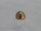Snail(dead), #7487 (Closeup)
