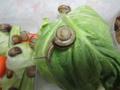 Snail, #8498