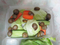 Snail, #8500