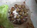 Snail, #8624