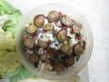 Snail, #8738