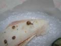 Snail, #9611 (Closeup)