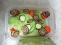 Snail, #9700