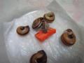Snail, #9793