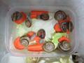 Snail, #9880