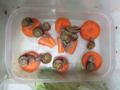 Snail, #A519