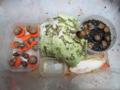 Snail, #A687