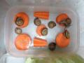 Snail, #0490