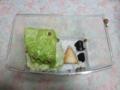 Snail, #0639