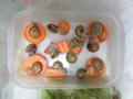 Snail, #2166