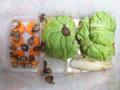 Snail, #7057