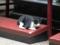 Cats of Yi Tien Palace, #0620