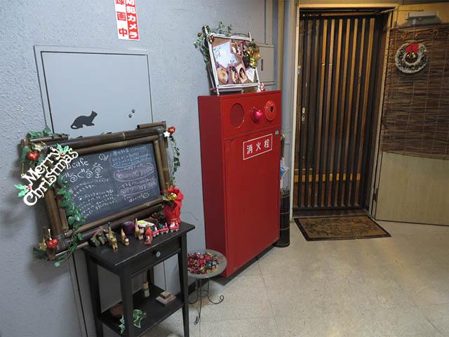 猫cafe ぐるぐる堂, #3