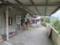 Houtong Cat Village, #103