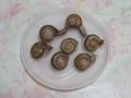 Snail, #0113