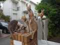 Abyssinian Sisters with Umi, #0648