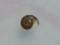 Snail, #9891 (3.5cm) (Closeup)