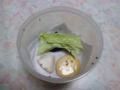 Snail, #A258