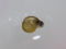 Snail, #A006 (Closeup)