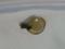 Snail, #A013 (Closeup)