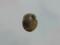 Snail, #A402 (Closeup)