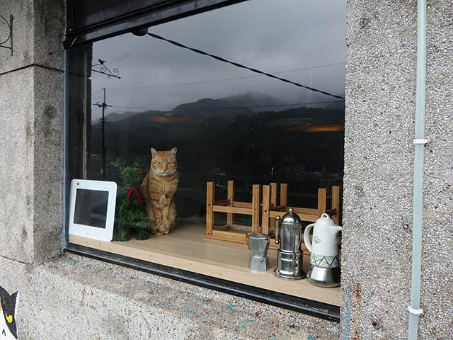 Houtong Cat Village, #12