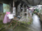 Houtong Cat Village, #14