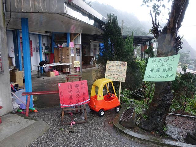 Houtong Cat Village, #20