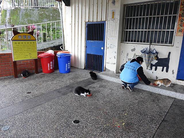 Houtong Cat Village, #22