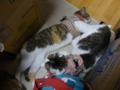 Valentina, Umi & Hana, #8641