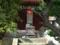 白峯寺の猫, #3737