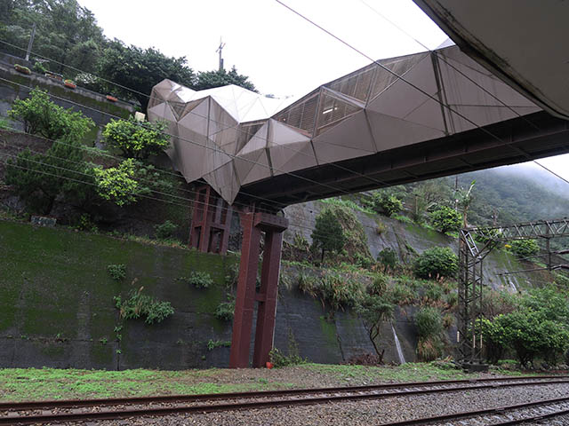 雨の朝の猫橋