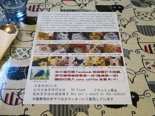 Cats of Xiao Mao Hua Yuan, #1048