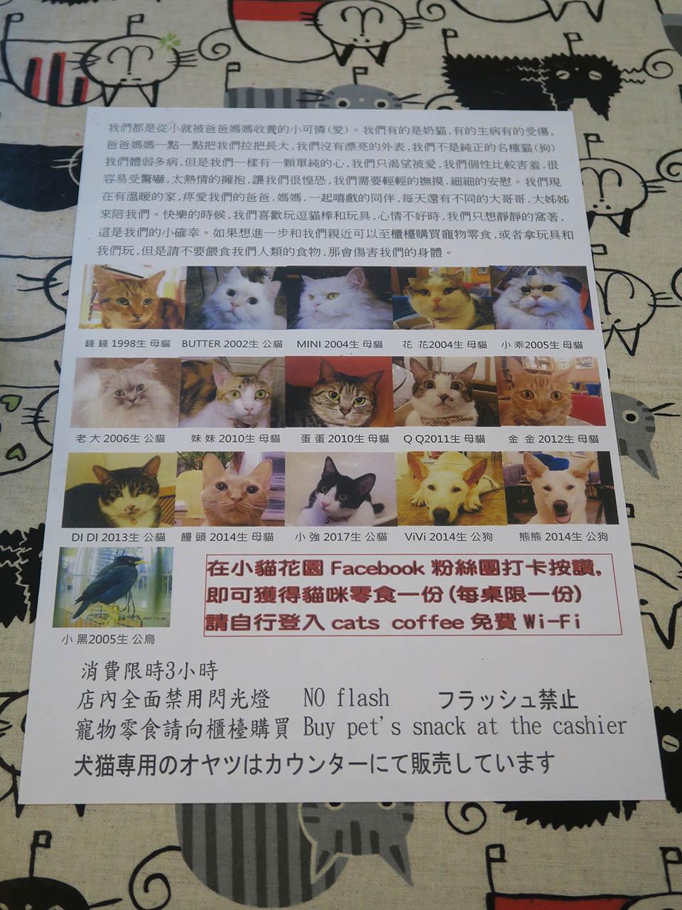 Cats of Xiao Mao Hua Yuan, #1058