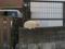 Local Cat, #1294