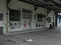 Cats of Houtong, #8671