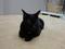 Cats of Neco Republic, #0469