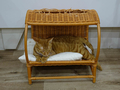 Cats of Neco Republic, #0541