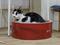 Cats of Neco Republic, #0699