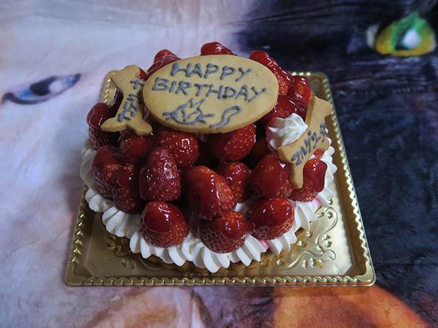 2018 Birthday Cake of Margherita & Caterina, #2